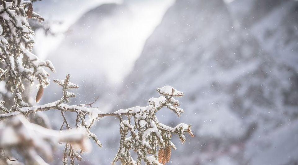 Esperienza dell'inverno in montagna